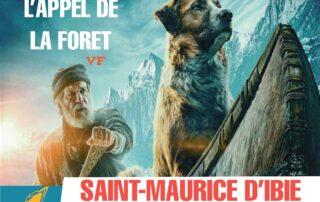 Cinéma sous les étoiles avec le film: «l'Appel de la forêt»