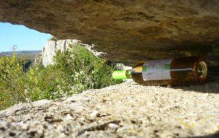 Vins de Montleury