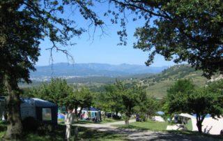 Camping les Charmilles - Darbres