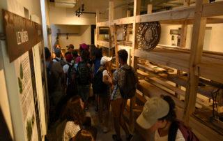 ver à soie Musée- Magnanerie