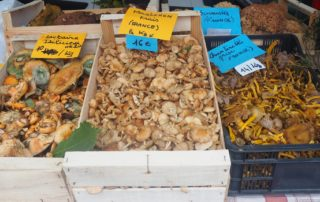 Foire aux champignons, chevaux et produits du terroir