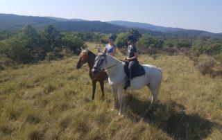 Equestrian farm Le Relais de Vazeille
