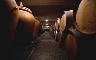 Tasting cellar – Castel of la Selve