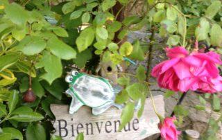 Welcome! - Domaine de la Manse