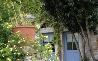 Building and vegetation - Domaine de la Manse