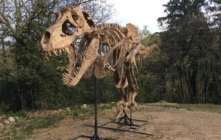 Un T-rex à Balaz
