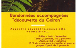 """Guided hikes """"""""Between village and forest"""""""" with Nature en Chemin"""