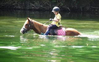 Traversée à cheval de rivières