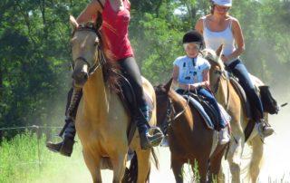 Ferme Equestre - Equitation Chavetourte