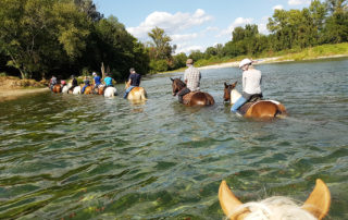 Guided Hike on horseback  - Equitation Chavetourte