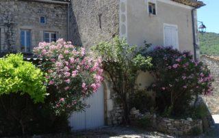 Le Domaine du Viticulteur - Gîte Les Oliviers